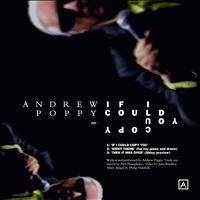 Andrew Poppy - If I Could Copy You