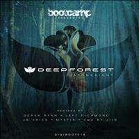 Jason Knight - Deep Forest