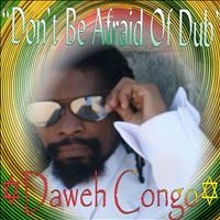 Daweh Congo - Don't Be Afraid of Dub - Single