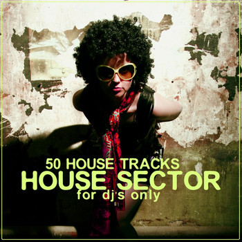 Various Artists - House Sector (50 House Tracks)