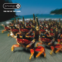 The Prodigy - The Fat Of The Land (Expanded Edition) (Explicit)