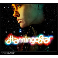Flamingo Star - Nothing Sweeta