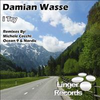 Damian Wasse - I Try