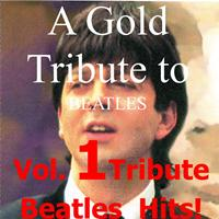 A Gold Tribute To Beatles - Vol. 1 Tribute Beatles Hits