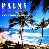 The Palms - Plump Round (Mike Newman Remix)