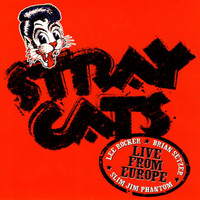 Stray Cats - Live In Europe - Holland 7/30/04