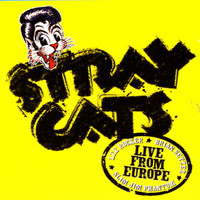 Stray Cats - Live In Europe - Bonn 7/29/04