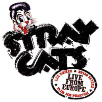Stray Cats - Live In Europe - Luzern 7/27/04