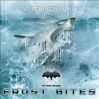 Miraculix - Frost Bites - EP