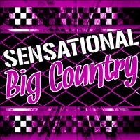 Big Country - Sensational Big Country (Live)