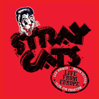 Stray Cats - Live In Europe - Paris 7/5/04