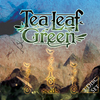 Tea Leaf Green - Seeds