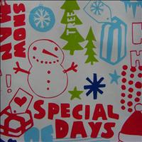 The Boston Pops Orchestra - Special Days