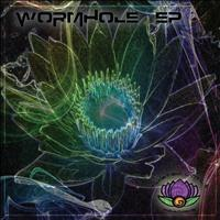 Wormhole - Earths Elements