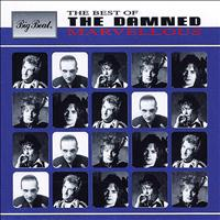 The Damned - Marvellous: The Best Of
