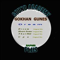 Gokhan Gunes - Dream
