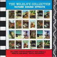 Sound Effects - Nature Sound Effects (The Wildlife Collection)