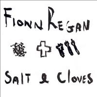 Fionn Regan - Salt & Cloves