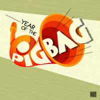 Pigbag - Year Of The Pigbag