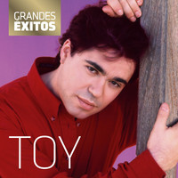 Toy - Grandes Êxitos