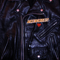 The Cribs - Leather Jacket Love Song - Single