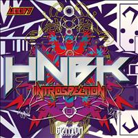 HNBK - Introspection