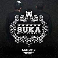 Lemon3 - Burp
