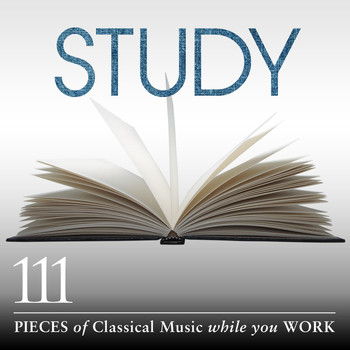 Various Artists - Study: 111 Pieces Of Classical Music While You Work