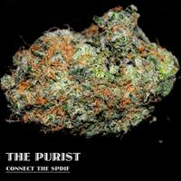 The Purist - Connect the Spdif (Explicit)