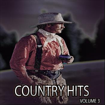 Various Artists - Country Hits, Vol. 3