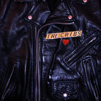 The Cribs - Leather Jacket Love Song
