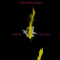 The Flesh Eaters - Forever Came Today