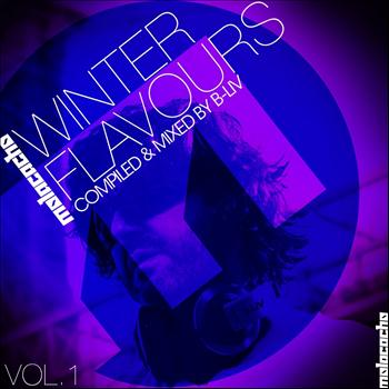 Various Artists - Winter Flavours, Vol. 1