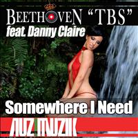 Beethoven tbs - Somewhere I Need