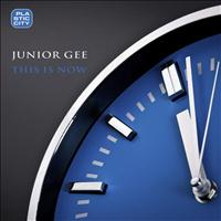 Junior Gee - This Is Now