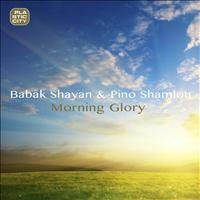 Babak Shayan - Morning Glory