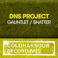 DNS Project - Gauntlet / Shatter