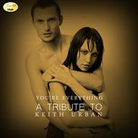 Ameritz - Tribute - Your Everything (A Tribute to Keith Urban)
