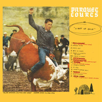Parquet Courts - Light Up Gold (Explicit)