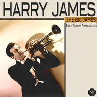 Harry James And His Orchestra - The Big James