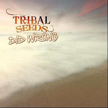 Tribal Seeds - Did Wrong
