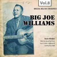 Big Joe Williams - Delta Blues Heroes, Vol. 8