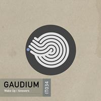 Gaudium - Wake Up
