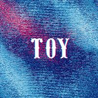 Toy - My Heart Skips a Beat
