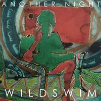 Wild Swim - Another Night