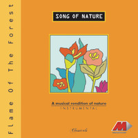 Vishwa Mohan Bhatt - Song Of Nature - Flame Of The Forest