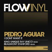Pedro aguiar - I Dont Want It