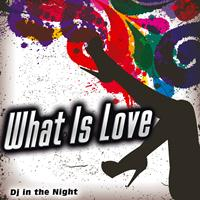 Dj in the Night - What Is Love - Single