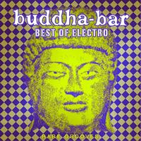 DJ Ravin - Buddha-Bar: Best of Electro - Rare Grooves