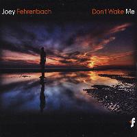 Joey Fehrenbach - Don't Wake Me
